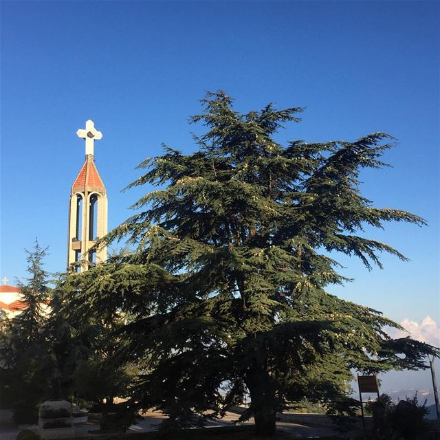 aanaya  stcharbel  saintcharbel  cross  cedar  towhereyouare  church ... (Mar Charbel Annaya)